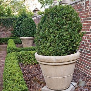 Formal Lawn - Photos: Tour These Designer Gardens - Southernliving. Large American boxwoods growing in containers anchor the planting beds. Low maintenance and drought tolerant, boxwoods can take the South's harsh temperatures and still look great.