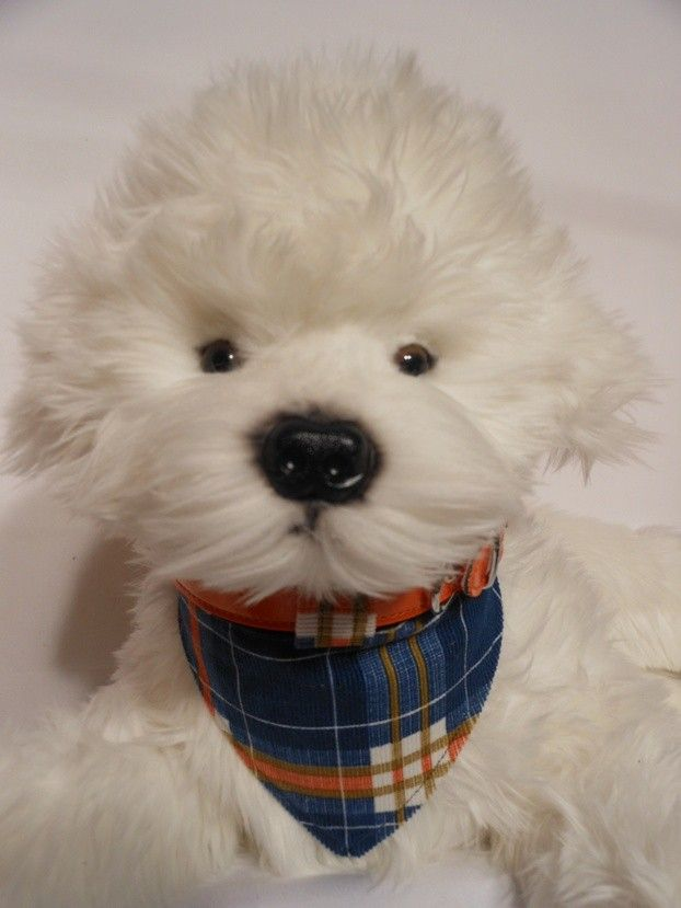 PLAID $15.00 On thin corduroy, a cute winter look with a bit of color.(slide on) best on our orange everyday collar.
