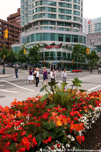 A Park in downtown Vancouver, Vancouver, British Columbia, Canada
