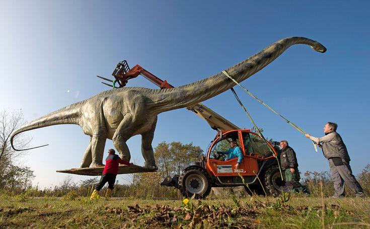 Dino Statue Causes Traffic Headache - http://designyoutrust.com/2014/10/dino-statue-causes-traffic-headache/