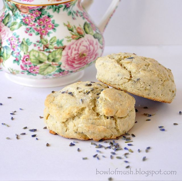 lavender earl grey scones. this is going to be the summer of the scone!  #recipe #bowlofmush