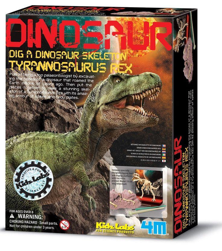4M Tyrannosaurus Rex Dinosaur Excavation Kit