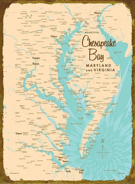 17 best images about chesapeake bay on pinterest herons for Chesapeake bay fishing map