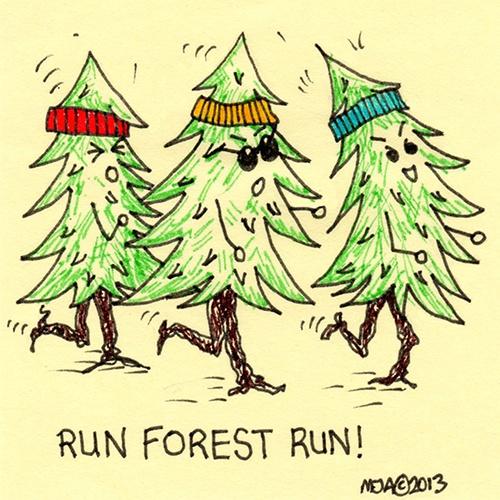 10 Best Forest Gump Images On Pinterest