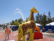 #Legoland Water Park #California