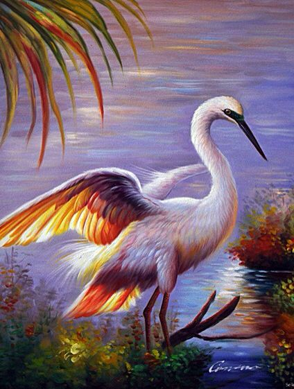Great White Heron Egret What Amazing Colours Art
