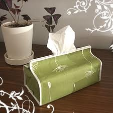 Kleenex Box Covers Can Enhance Your Room!  Hundreds Of Kleenex Box Covers To Choose From.