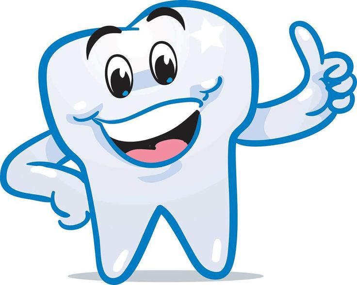 Did You Know...  Adult Humans normally have 32 teeth? Be sure to Brush and Floss each and every single one! #Teeth #Smile