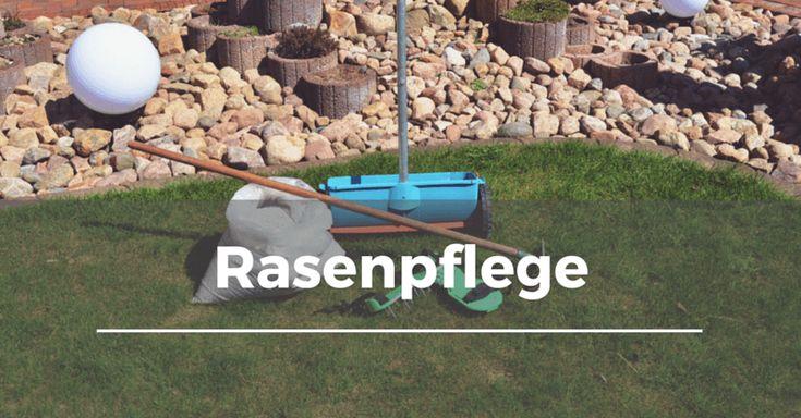 Themen: Rasen mähenRegelmäßiges Mähen gehört zu den wichtigsten Maßnahmen in der Rasenpflege. So bleibt der Rasen dicht wie ein Teppich und es entsteht eine optisch ansprechende Rasennarbe. Zudem sorgt das Mähen dafür, dass die Gräser dicht nachwachsen und neue Triebe bilden. So erhält man auf Dauer einen dichten und unkrautfreien Rasen. Gemäht wird in der …