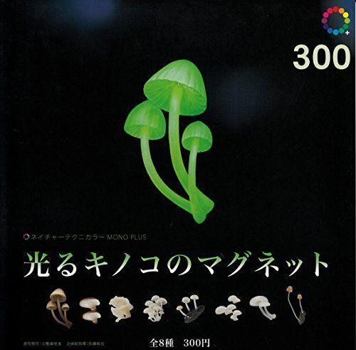 Magnet 8 Pics Set Capsule Nature Technicolor Mono Glowing Mushroom From Japan