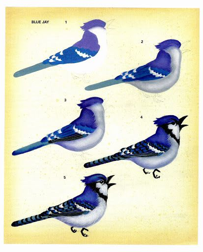 Birds in my garden - senia One Stroke - Álbumes web de Picasa