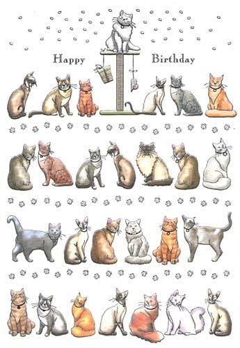 Happy Birthday Cats Card:))))