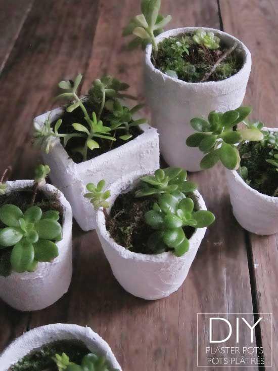 diy plaster flower pot make pinterest. Black Bedroom Furniture Sets. Home Design Ideas