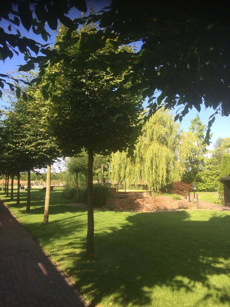 Tijdens een mooie zonnige dag is het genieten in de tuin.