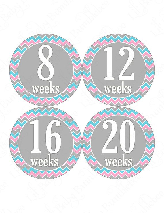 Pregnancy+Stickers+Pregnancy+Announcement+by+LittleBabyBumblebee,+$8.00