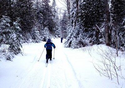 Pistes de ski de fond accessibles gratuitement http://economiesetcie.com/2016/01/ski-de-fond-pistes-gratuites-quebec/