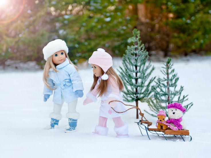 Dolly Dorm Diaries ~ American Girl Doll House Doll Diaries Blog: { Snow Day! }