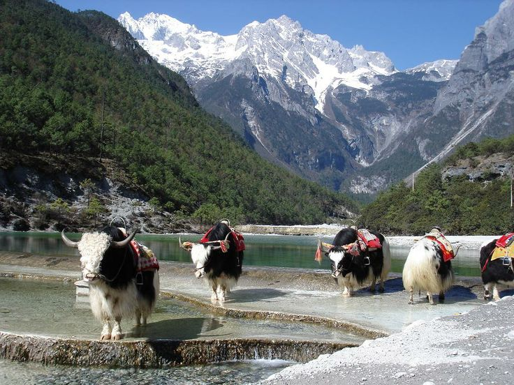 26 Best Images About Blue Moon Valley China On Pinterest