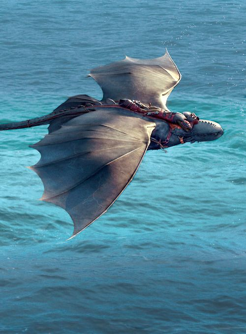 """let the wind carry us"" 