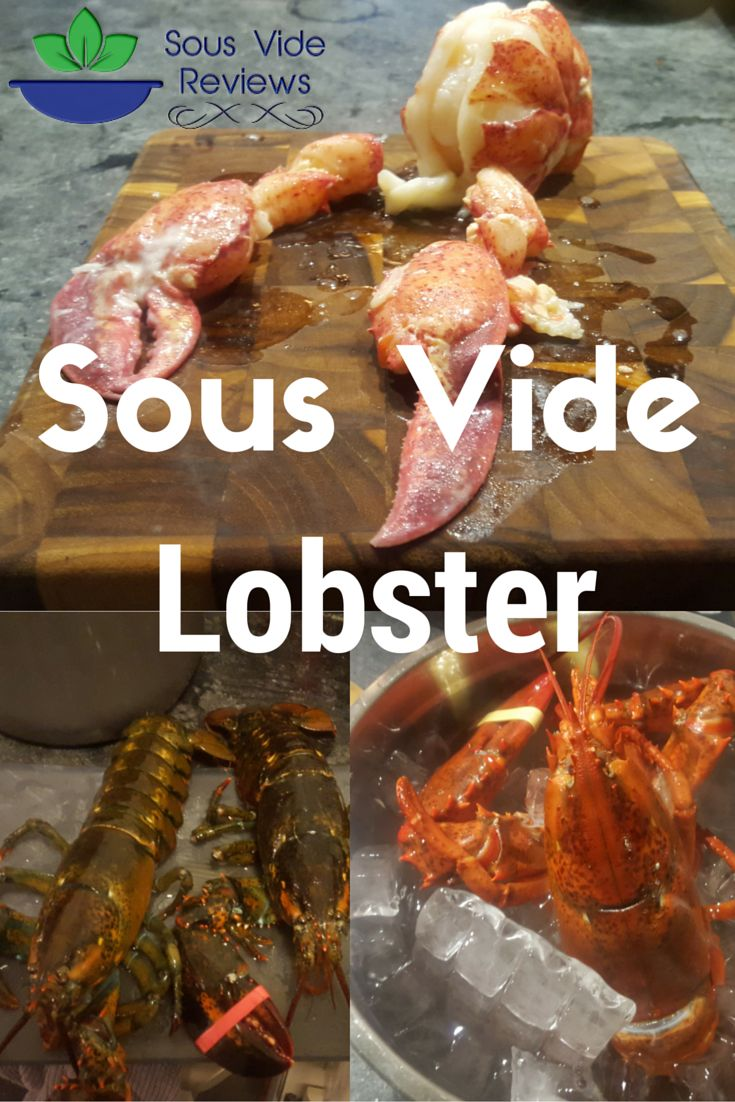 Lobster is fantastic, as long as it is not overcooked. Today we're going to go over a fool-proof way to prepare lobster using the sous vide technique.