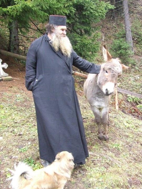 Orthodox Christian Prayer For A Pet Dog
