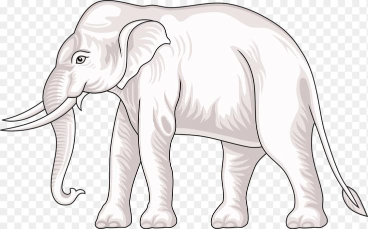 Thai Elephant Png File White Elephant Of Wikimedia Commons 1024 638 Png Download Free Transparent Backg Cartoon Clip Art Elephant Images Cartoon Elephant