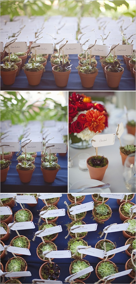 little potted succulents double as place cards and favors