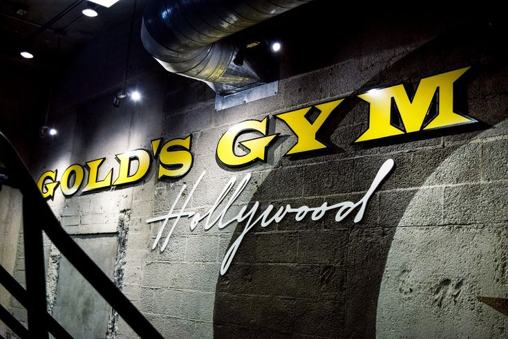 Gold Gym's Hollywood Review. What machines to use as a women.