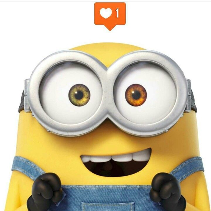 Search Results For U201cminions Movie Bob Wallpaperu201d U2013 Adorable Wallpapers Amazing Pictures