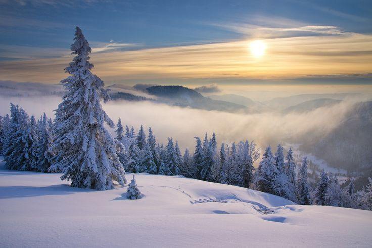 Der Feldberg - einer der besten Orte in Deutschland zum Skifahren, Snowboarden oder Schlittenfahren. Doch der höchste Berg im Schwarzwald zeigt sich auch in Sachen Natur von seiner besten Seite.