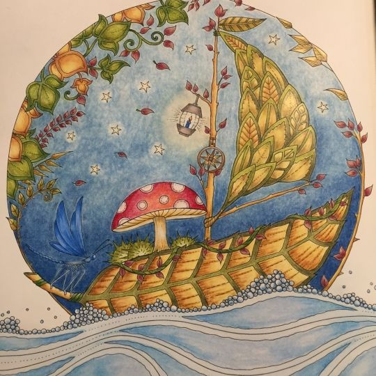 Boat From Johanna Basfords Enchanted Forrest Coloured With Primsacolour Love It