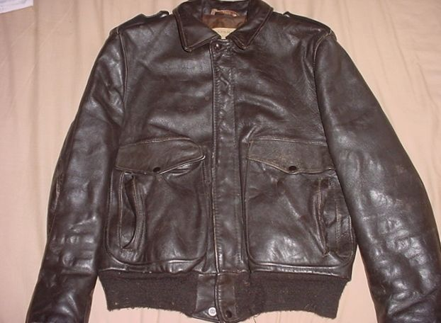 Leather jacket insect