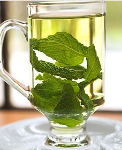 Peppermint - It is not only a painkiller for headaches and reduces fevers by inducing sweating and cooling of the body, but it helps bring up mucus and other material from the lungs, bronchi, and trachea during bronchitis, colds, and the flu.