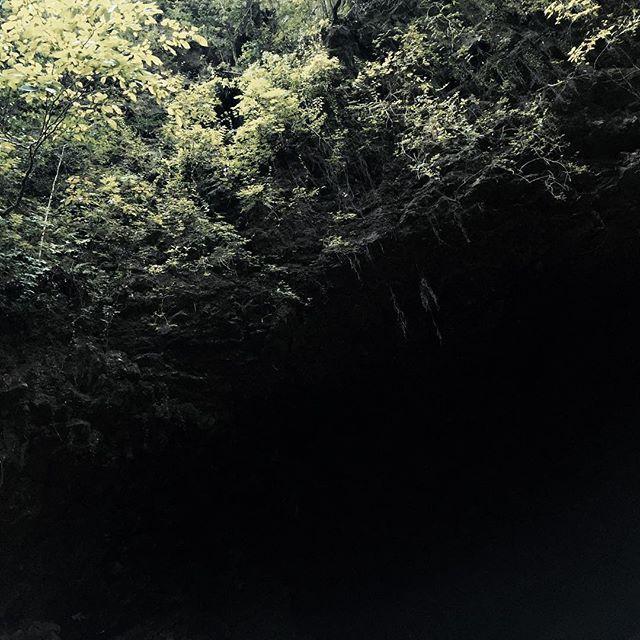 【emiyaism】さんのInstagramをピンしています。 《岩戸に篭った天照大御神にいかに出ていただくかを神々が話し合った天安河原。私たちのハートの岩戸も開き光が戻るなら、岩戸の前で楽しく大騒ぎしないとね♪  #天安河原 #天岩戸神社 #森 #木 #forest #gradetion #lightshadow》