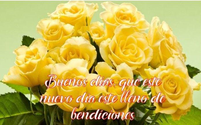 imágenes de rosas amarillas con frases de buenos días