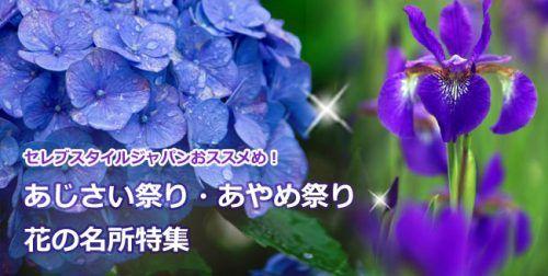 全国<あじさい祭り・あやめ>祭り・花の名所特集2016
