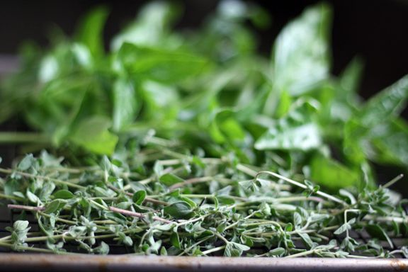 How to dry herbs from @Wendy Hondroulis