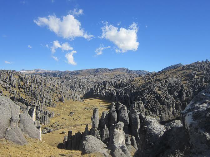 Bosque de Piedra de Macusani - Corani