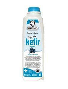 Organic Blueberry Milk Kefir | Happy Days Dairy