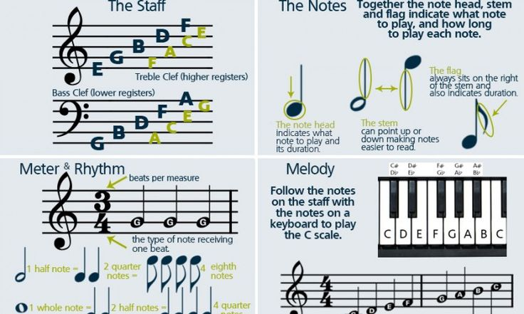How to Read Sheet Music - learning the basics. learning how to read basic notes