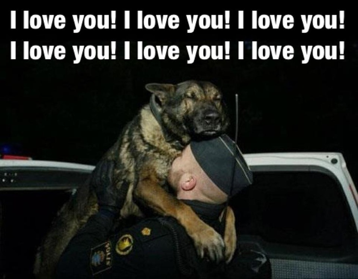 We love you too.  And salute you.Police Offices, Heart, Heroes, Friends, Dogs, Pets, Things, German Shepherd, Animal