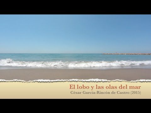 El lobo y las olas del mar: canción infantil para controlar el enfado - YouTube