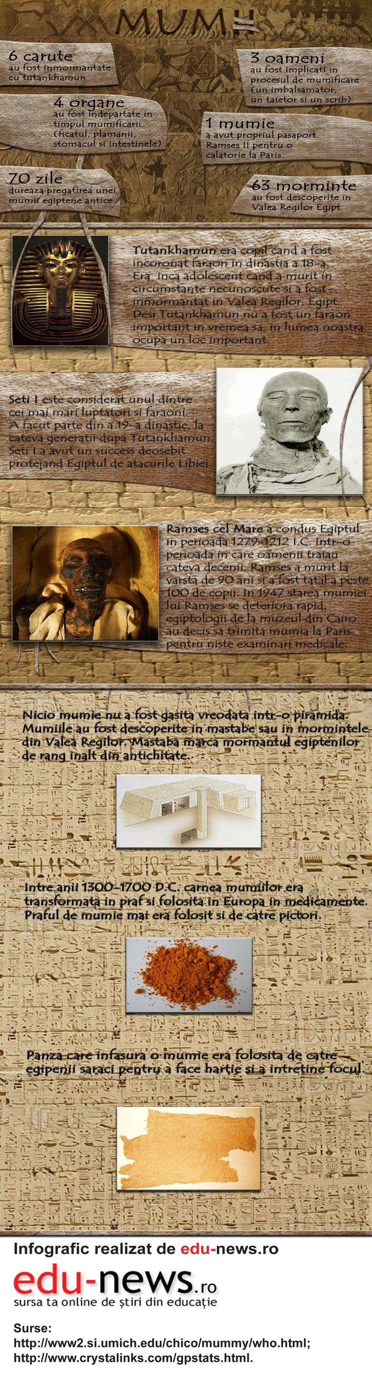 Mumii de oameni și de animale au fost găsite de-a lungul lumii, ori că au fost intenționat îmbălsămate, ori că au fost păstrate natural datorită condițiilor neobișnuite.