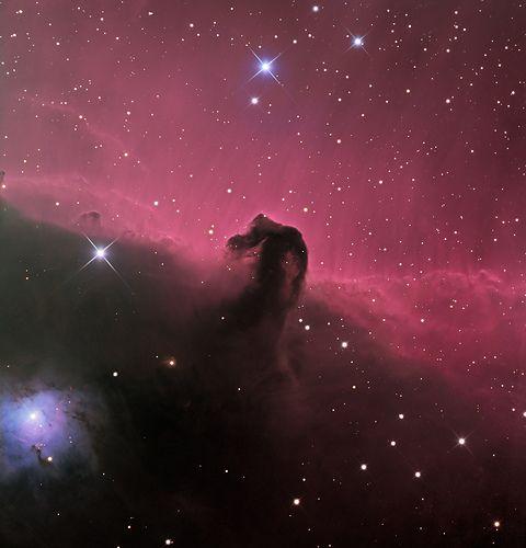 Nebulosa Cabeza de Caballo/ The famous Horsehead Nebula
