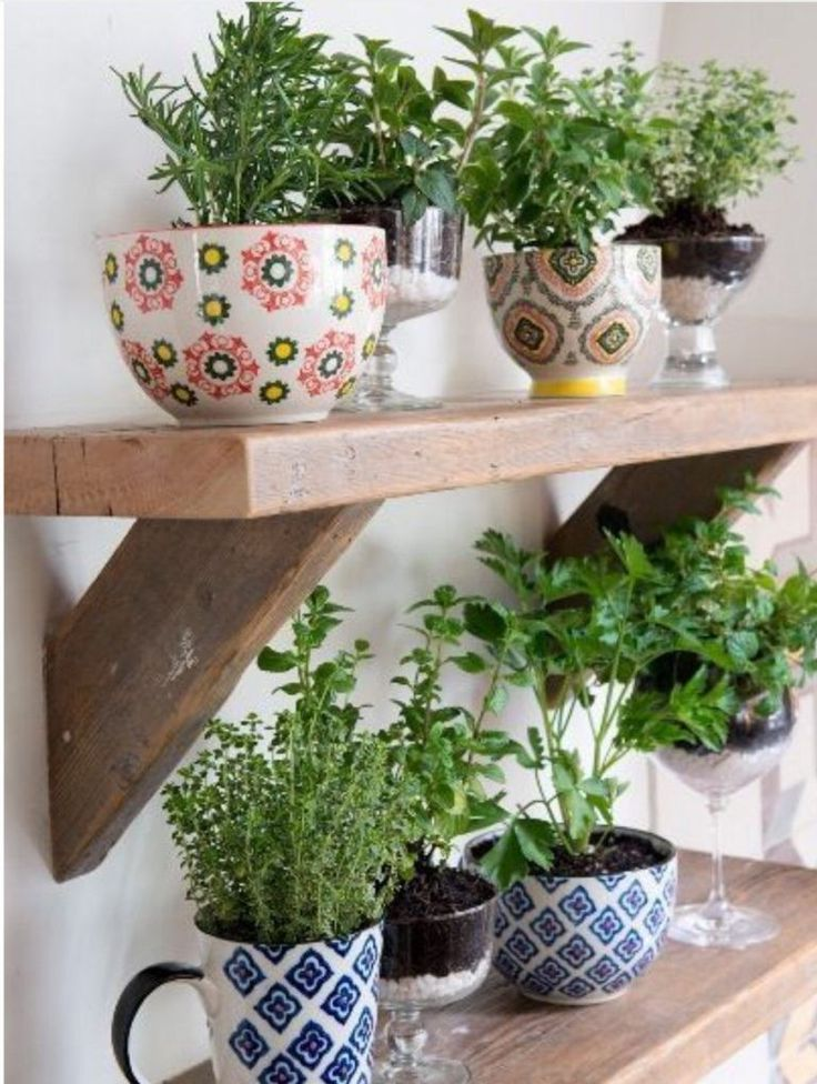 herbes aromatiques 15 fa ons astucieuses de les faire pousser en int rieur plantes et. Black Bedroom Furniture Sets. Home Design Ideas