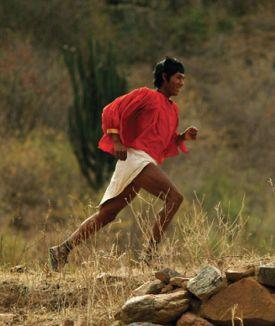 Tarahumara, Born to Run
