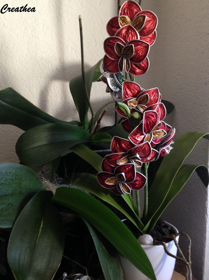 Nespresso:Orchidea!
