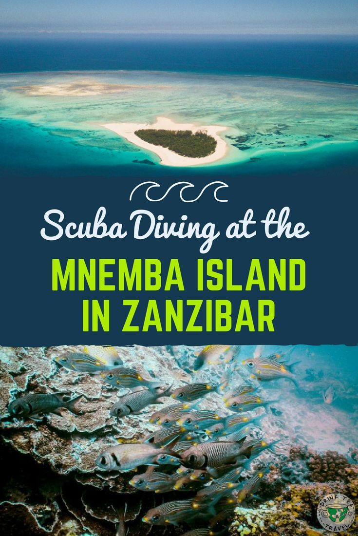 Looking for a place to go scuba diving in Africa? Check out our scuba diving experience in Mnemba island in Zanzibar.