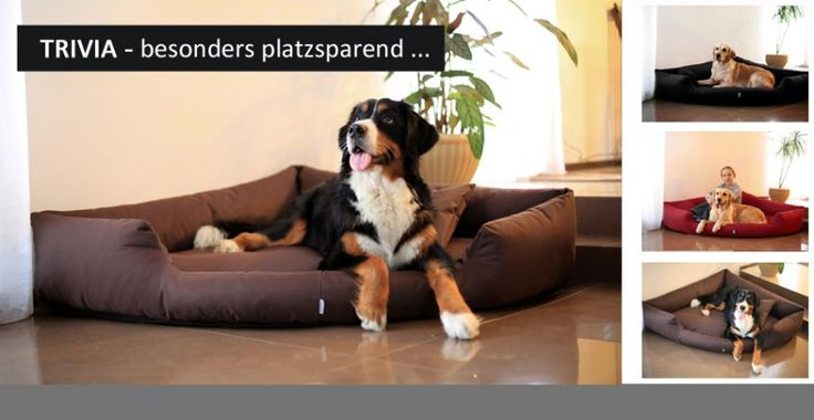 tierlando - Hundebett TRIVIA in Dreiecks-Form | Platzsparwunder