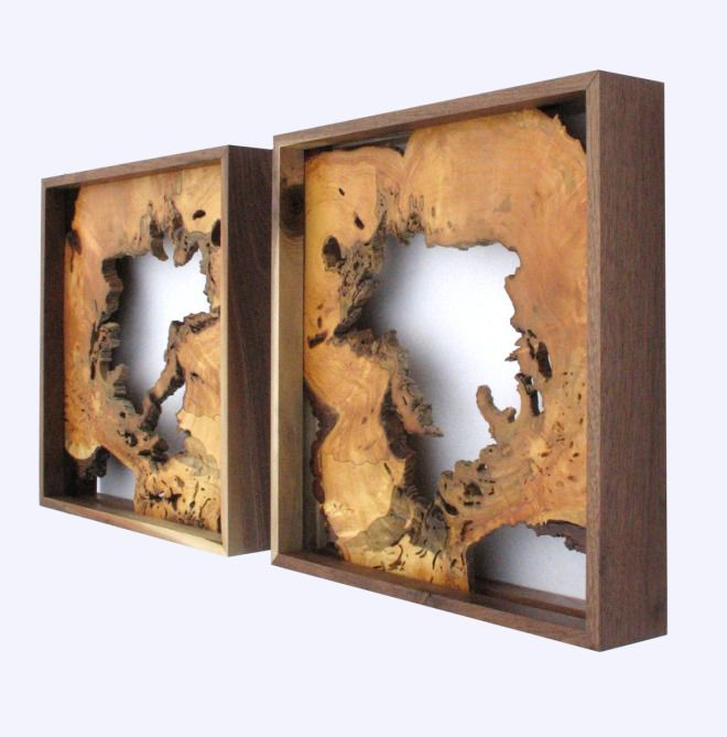 Hanging ash wood slices (framed) by Virginia Birchfield